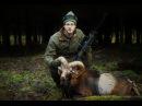 Jaktbloggen Hägnjakt