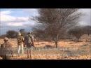 Tokkroos Safari - Охота на льва, Калахари