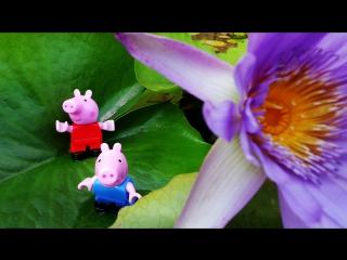 Непослушный Джордж. Свинка Пеппа и Джордж на прогулке. Опасные игры в салки.