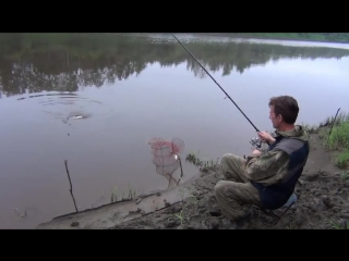 Фидерная рыбалка  ловля леща летом