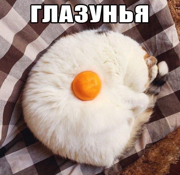 https://pp.vk.me/c630825/v630825316/290cc/8Rfh9XJxwPA.jpg