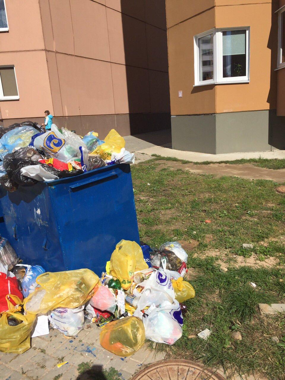 «Мусор не вывозится неделями». Как полочане борются с проблемой переполненных мусорных баков, фото-1