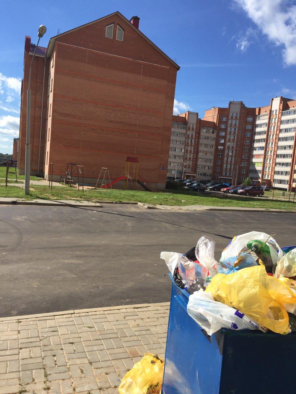 «Мусор не вывозится неделями». Как полочане борются с проблемой переполненных мусорных баков, фото-2
