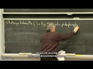 MIT Lecture фотосинтез