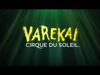 Varekai by Cirque du Soleil
