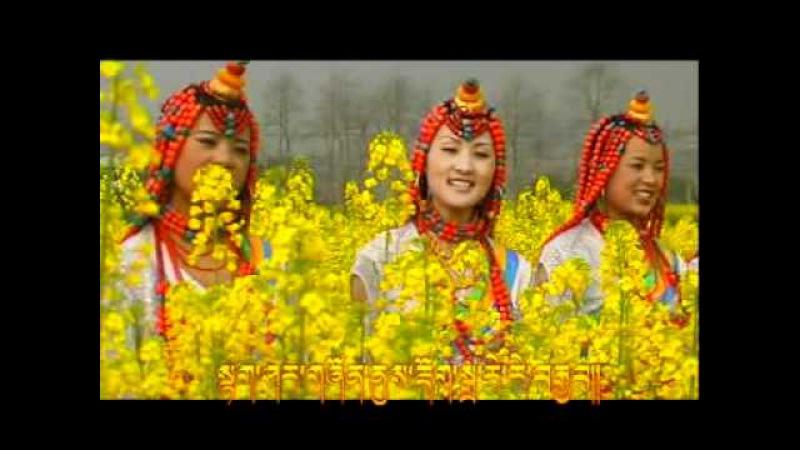 Tibetan Folk Song