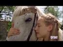 Les contes de Grimm - La Belle au Bois Dormant