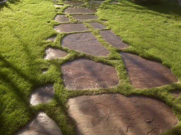 Пошаговая дорожка из камня