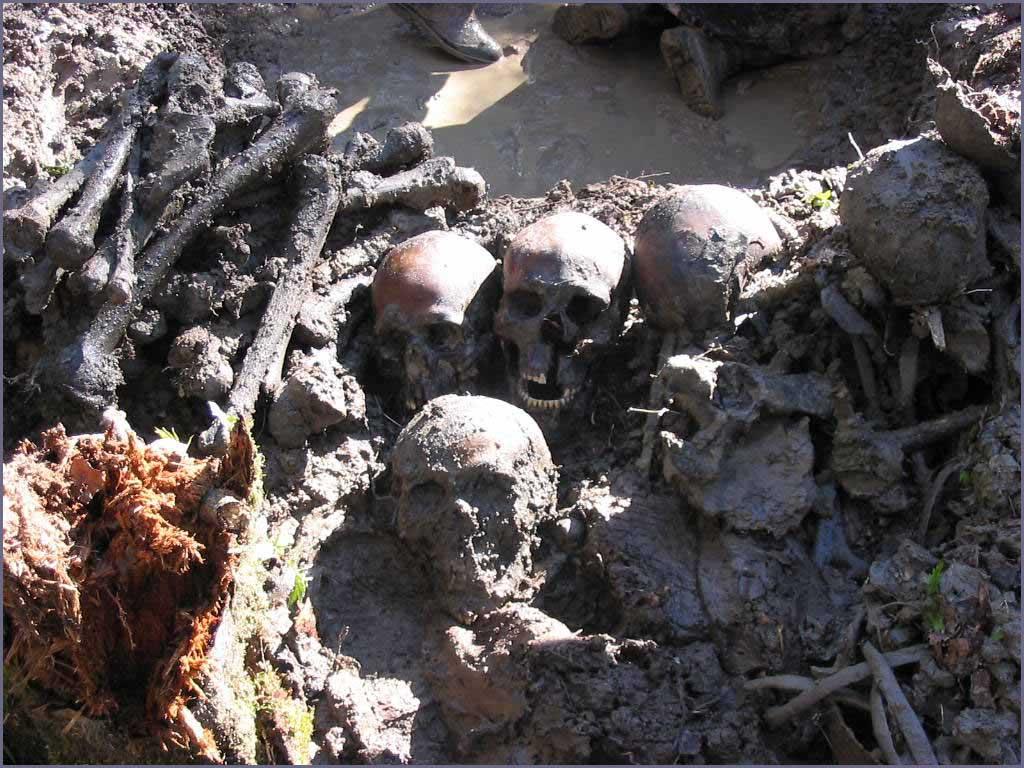 Мясной бор - русская долина смерти, союз нерушимый.