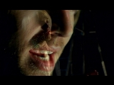 Darren Hayes - Insatiable (Ненасытная)