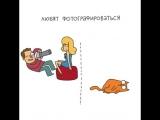 Сравнение женщины с кошкой