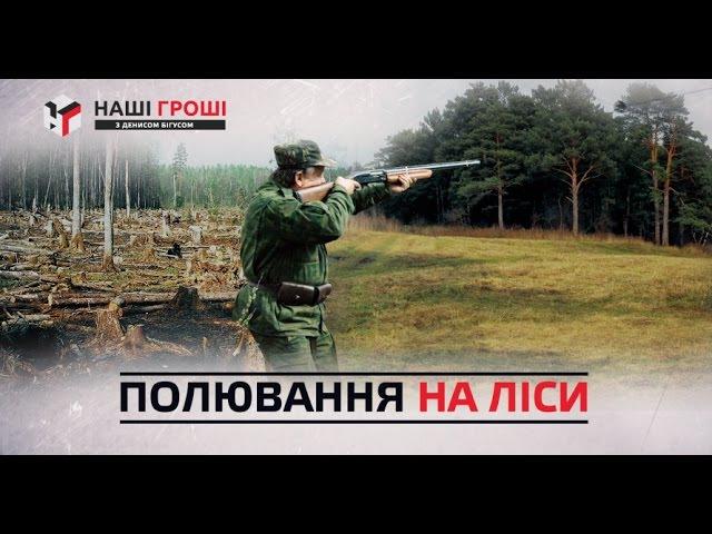 Наші гроші №131. Пшонка і Арбузов зберегли свій ліс; лісничі полюють у заказниках (2016.07.25)