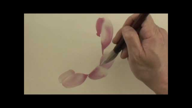 Chinese Painting Lesson Camellia 4