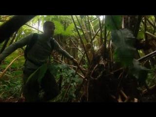 Выжить любой ценой/Man vs. Wild (2006 - 2012) Фрагмент (сезон 1, эпизод 4; русский язык)