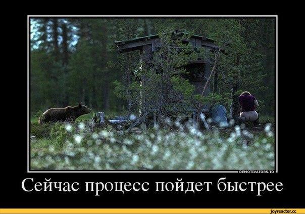 http://cs630827.vk.me/v630827711/3fe4d/wYa-2J2oH5o.jpg