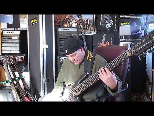 12 String Bass Guitar - Andy Irvine