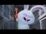 Кролик по имени Снежок - Тайная жизнь домашних животных