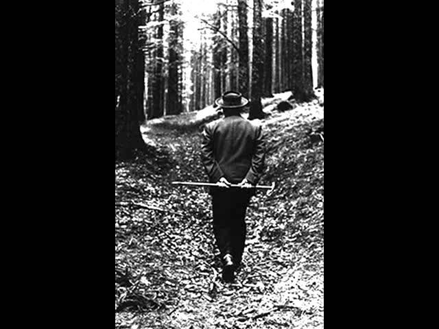 Heidegger liest Hölderlin: 03. Heimkunft
