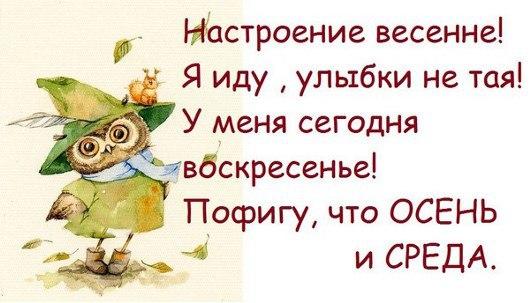 Будьте здоровы! Хорошего дня! SDRDFgyqW2g