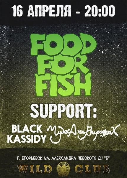 1604. FOOD FOR FISHМосква саппорт. Егорьевск