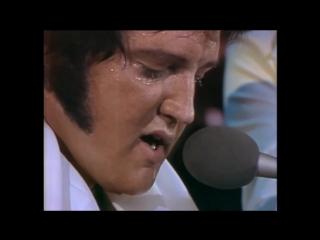 Уникальная запись, на которой Элвис Пресли исполняет My Love