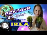 HAUL IKEA ★ ПОКУПКИ IKEA★ ИКЕА для ДОМА, для КУХНИ, для ДУШИ