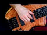 Adele 'Hello' - Fretless Bass - Zander Zon
