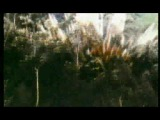 Fatboy Slim - Sunset (Bird of Prey) - Directors Cut