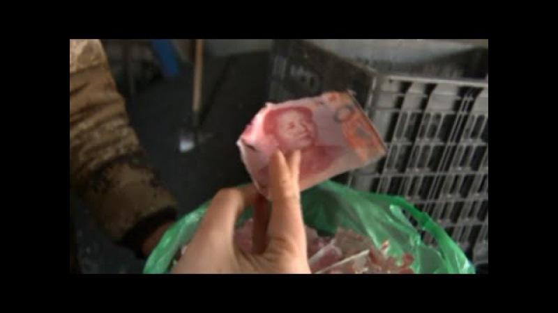 Chines destroi pacote de dinheiro, Harbin, China.