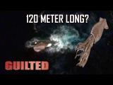KRAKEN is found in Google Earth! A 120m Giant Squid Found! June 2016!