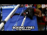 BOXERS PUNCHED THROUGH THE ROPES #2 (Boxing Vines)  vk.comboxingvines