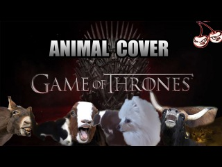 Game Of Thrones OST (Animal Cover)