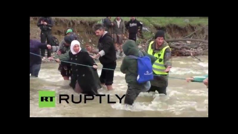 Греция: Многожильный беженцы пересекают реку в смертельной попытке достичь Македонии.