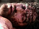 ' Упала слеза ' Галим Хусаинов 'Страсти Христовы'