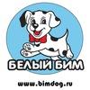 Белый Бим | bimdog.ru | 690-555