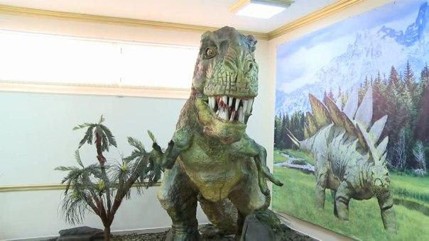 Шымкентте «Динозаврлар әлемі» атты анимациялық көрме ашылды