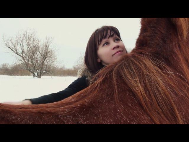 Девушка и конь