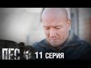 Сериал Пес - 11 серия