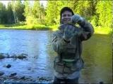 Рыбалка ловля хариуса / отличный клев хариуса и ленка / Сказочная тайга