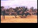 RDVideo - Reining in 1941 - Primi approcci al reining nel 1941.