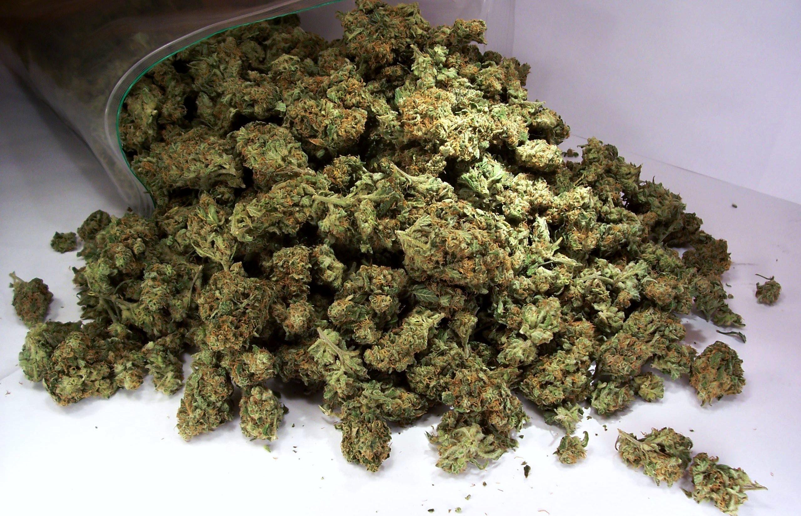 Сотрудник брянской исправительной колонии №1 задержан с марихуаной