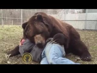 мужик с ручным медведем и стальными яйцами ))
