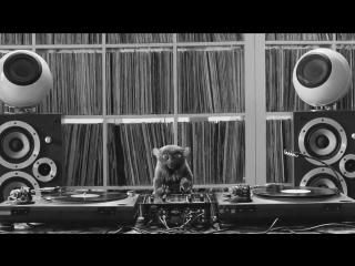 Hypno - Reggae
