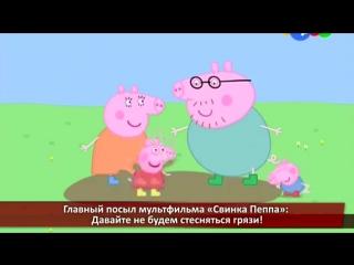 Чему учит мультфильм Свинка Пеппа.