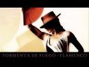 Tormenta De Fuego Flamenco ▄ █ ▄ █ ▄