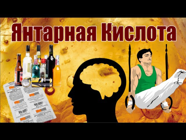 Янтарная Кислота Алкоголику Спортсмену Ноотропщику