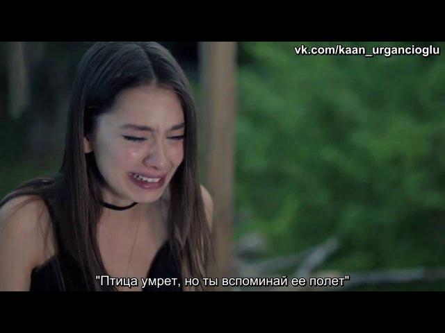 Kara Sevda Черная любовь 34 серия 3 фрагмент анонс рус суб