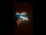 Led_shoes