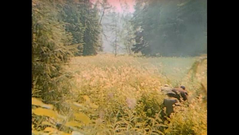 Уничтожение немецкого разведцентра (Вечный зов)