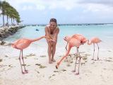 Flamingo Day on Arubas Renaissance Private Island